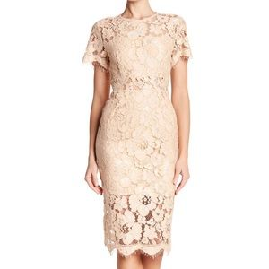 Short Sleeve Lace Fitted Midi Dress